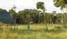 Elewana Elephant Pepper Camp : Wildlife by the Suites