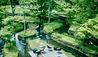 Hoshinoya Karuizawa : Rice Terrace (Photo Credit to Hoshino Resorts)