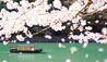 Hoshinoya Kyoto : Boat Arrival (Photo Credit to Hoshino Resorts)