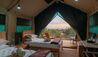 Explorer Camp at Shamwari Private Game Reserve : Guest Tent