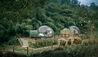 Anantara Golden Triangle Elephant Camp & Resort : Jungle Bubbles at Dusk