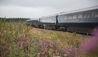 Belmond Grand Hibernian : Train Exterior
