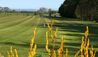 Hawkswood Country Estate : Driving Range