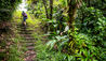 Fort Young Hotel & Dive Resort : Hiking