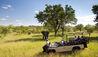 Ulusaba Private Game Reserve : Safari