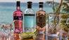OZEN LIFE MAADHOO : Gin is In