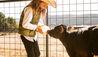 The Lodge at Blue Sky : Little Vaquero's - Girl feeding calf