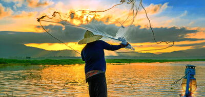A Vietnamese Cultural Discovery