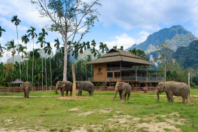 Elephant Hills