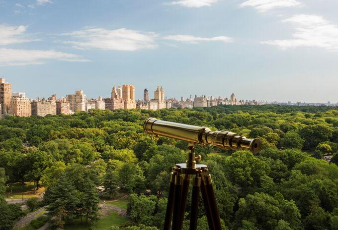 The Ritz-Carlton, New York Central Park